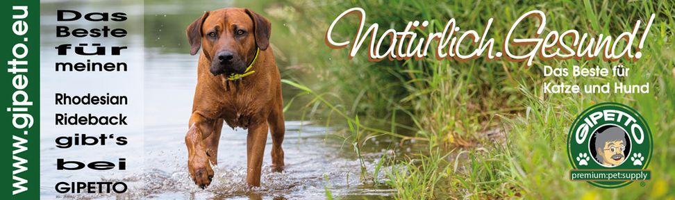 Gipetto Premium - Natürlich Gesund für Katze und Hund