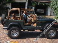 makakadi_hunde_im _jeep_13__1377